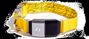 fi collar review
